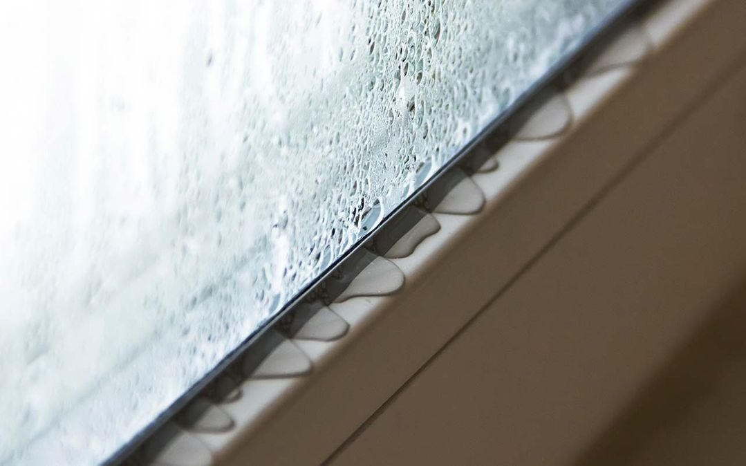 condensation-window-sill